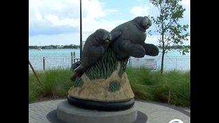 Water crisis has impact on Florida manatees