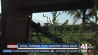 Local farmers hope pandemic ends soon