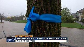 Menomonee Falls neighborhood gathers to celebrate birthday of girl who died from brain tumor