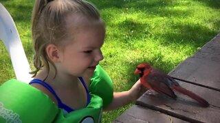 Three-year-old bird whisperer