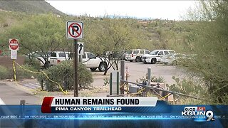 Human remains found on Pima Canyon Trail in Catalina Mountains