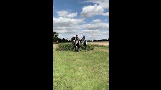 Woman's Horse Runs Straight Through A Bush!