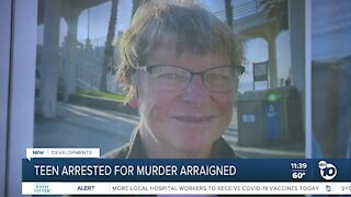 Arraignment for teen accused of killing Carlsbad woman on trail