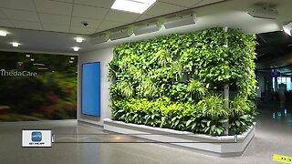 Living wall debuts at Appleton airport