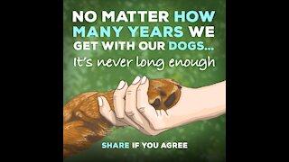 No Matter How Many Years [GMG Originals]