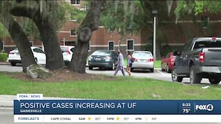 University of Florida sees increase in cases