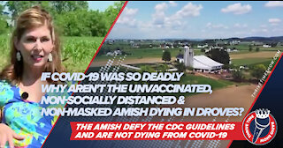 If COVID-19 Was So Deadly Why Aren't the Unvaccinated, & Non-Masked Amish Dying In Droves?