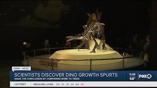 Dinosaurs have growth spurts like humans