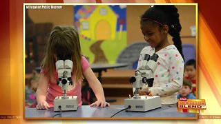 Great Ways to Experience the Milwaukee Public Museum