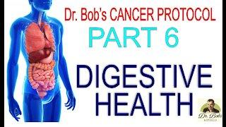 Cancer Protocol Part 6 - Probiotic/Prebiotics & Digestive Enzymes