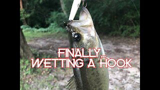 Wetting a hook...finally.