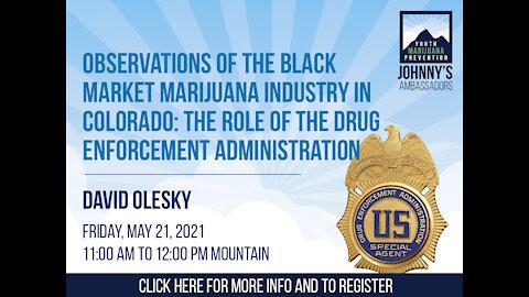 Observations of the Black Market Marijuana Industry in Colorado