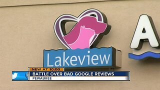 Animal clinic sues over bad Google reviews