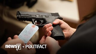 What The Fact: Analyzing Support For Gun Background Checks