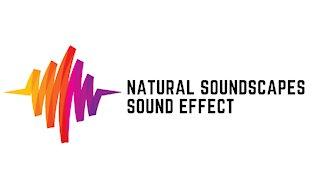 Natural Soundscapes Sound Effect