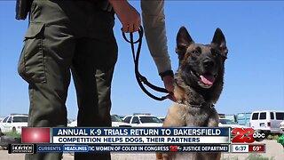 Bakersfield K-9 Trials returns July 20