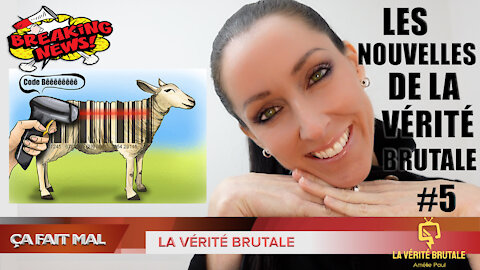 Les Nouvelles de la VÉRITÉ BRUTALE #5