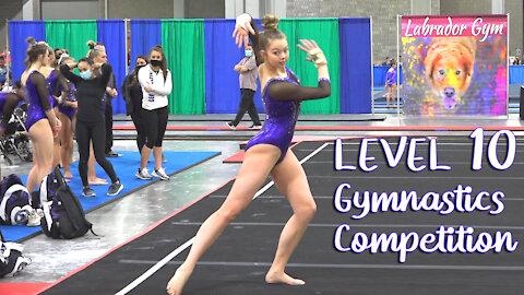 Whitney Bjerken | 2nd Level 10 Gymnastics Competition 2021