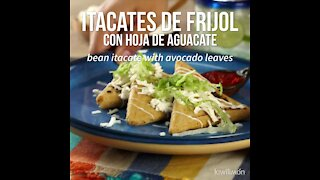 Bean Itacate with Avocado Leaves