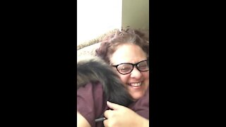 Cat clearly enjoys slapping owner in the face with his tail