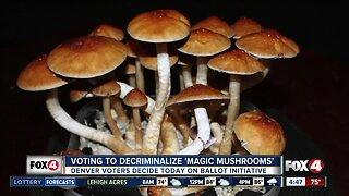 "Denver voters will decide whether to decriminalize ""magic mushrooms"""