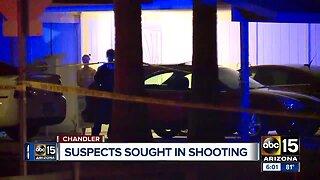 Police investigate homicide in Chandler