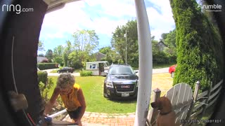 Camera catches mail courier adorably greeting family dog