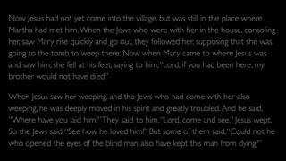 The Gospel of John - Chapter 11