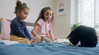 Children Playing with kitten