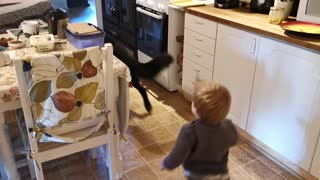 Toddler adorably plays tag with friendly German Shepherd