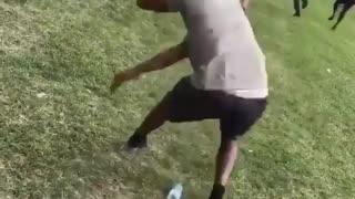 Funny videos online