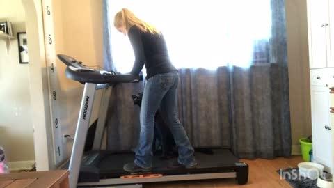 Teach your dog how to run on a treadmill!