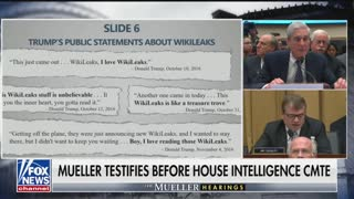 Hearing: Quigley and Schiff question Robert Mueller