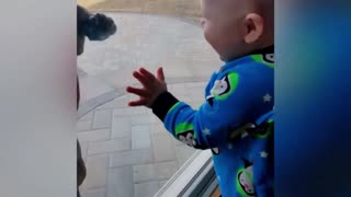 Baby Happy to Meet with Dog