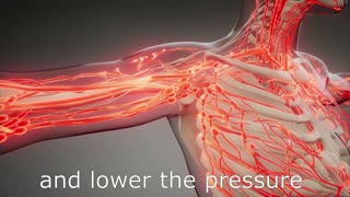 High or low blood pressure? Take Recover-Me Vascular,