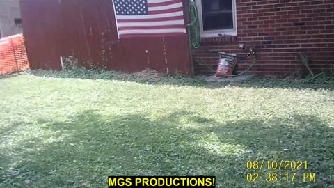 POV MOWING THE LAWN (WEEK 8)