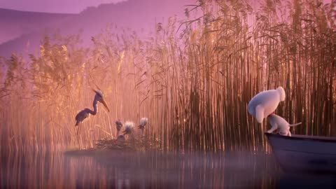 The Puppy and Heron, animated short, by Passion Pictures