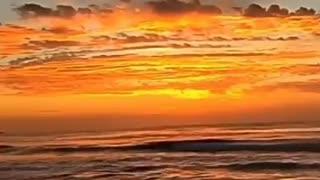 Beach and Brazilian Music - PureBar Band