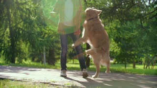 Funny Video Boy Playing With His Dog