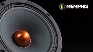 Team Nutz offers Auto & Marine Audio Systems