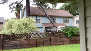 Tree Falls on House from Hurricane Sally