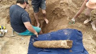 3 Million-yo Mammal Fossil Found On Beach