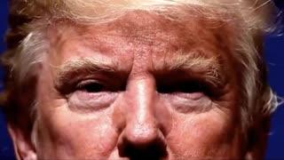 POTUS - Thank You President Trump!