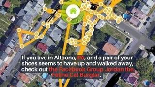 Cat Burglar Steals Record Number Of Neighborhood Shoes