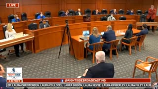 Rep. Cynthia A. Johnson accuses witness in Michigan State Senate Committee on Oversight of LYING