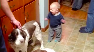 Cute Baby Playing With Dog Compilation