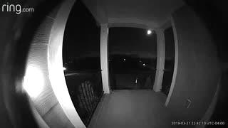 Strange Creature on Front porch