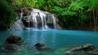 Waterfall Jungle Sounds Relaxing Tropical