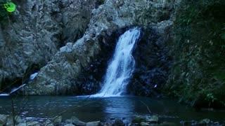 Cascade waterfall landscape forest