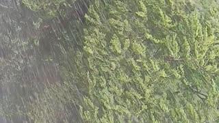 Beautiful rain @ Malaysia
